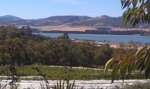 Barilla Bay