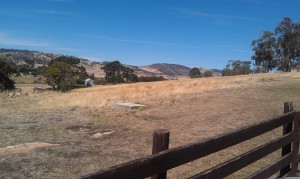 Typical Australia - from Pooley's Winery