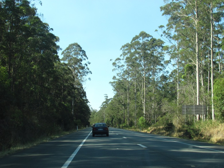 The Coast Road - Pacific Highway