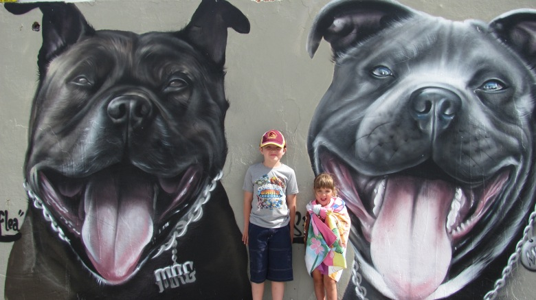 Staffy Rescue mural, Bondi, Sydney