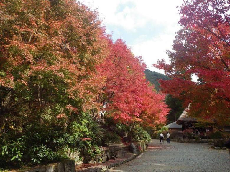 Heike Museum in Autumn