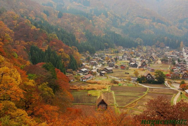 Shirakawa-go - courtesy of AllJapanTours