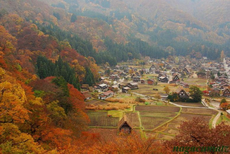 Shirakawa-go - courtesy of AllJapanTours