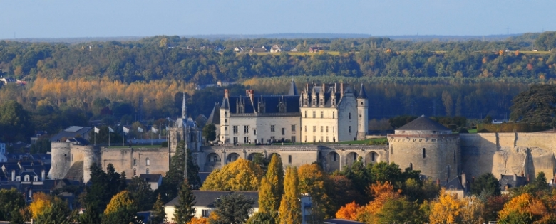 Chateau d'Amboise - photo from http://www.chateau-amboise.com/en/page/photos