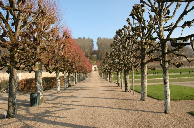 Chateau De Villandry - image from www.chateauvillandry.fr