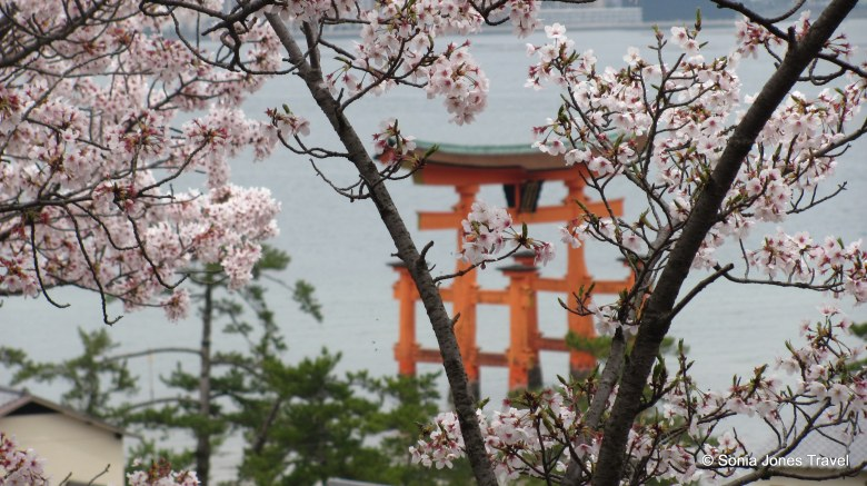 The Japanese Love of Blossoms