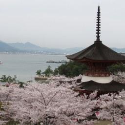 View of Miyajima