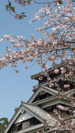 Kumamoto Castle, Kyushu