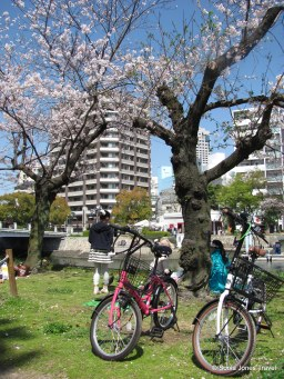 Bikes and Blossoms, Hiroshima