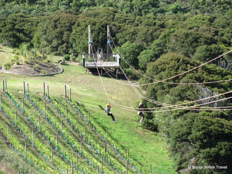 The first zipline at Ecozip