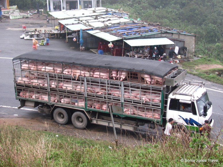 Pork Banh Mi to go... Danang, Vietnam