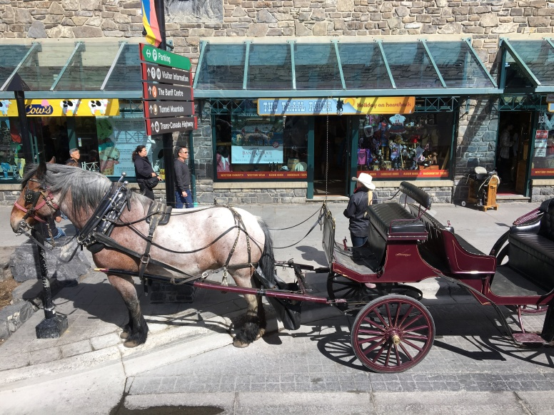 Prefer to travel in a horse and cart?
