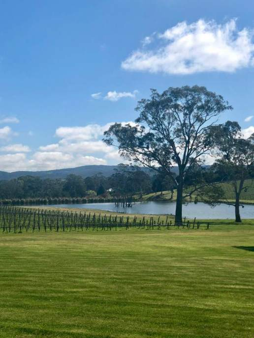 Adelaide Hills 3